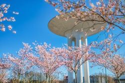 Cherry tree branches (Sakura) full of pink blossoms at Hyllie Vattenpark. The modern Vattentorn (Hyllie Water Tower) exterior seems a flying saucer among the pink blooming trees - Malmo, Sweden