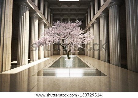 Cherry tree in the interior of a building