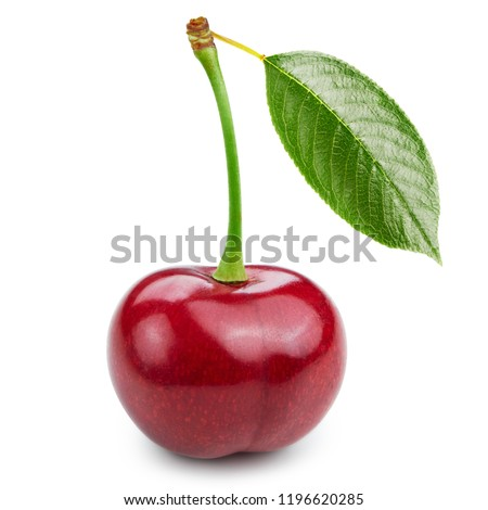 Cherry with leaf isolated on white background. Cherry Clipping Path