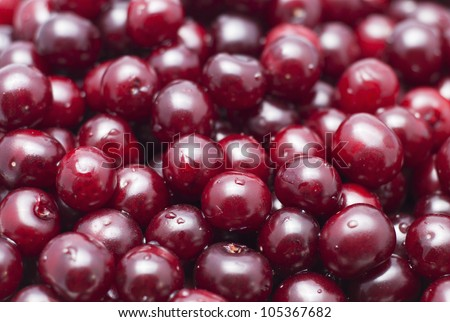 Cherry with water drops
