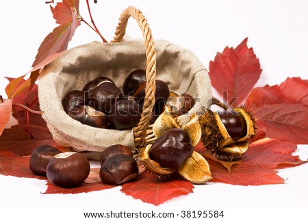 Chesnut in basket and red leaves - autumn composition