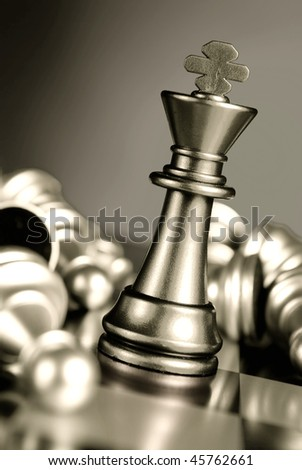 Chess combination. A full series in portfolio by word chess.