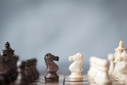 Chess pieces knights facing each other for a standoff on chessboard with blurred background. Chess knights confronting each other. Chess knights head to head.