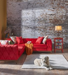 chester sofa interior