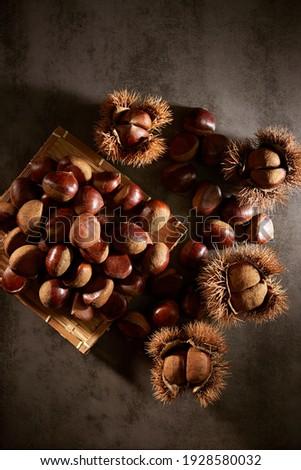 chestnut bur and fresh chestnuts Foto stock ©