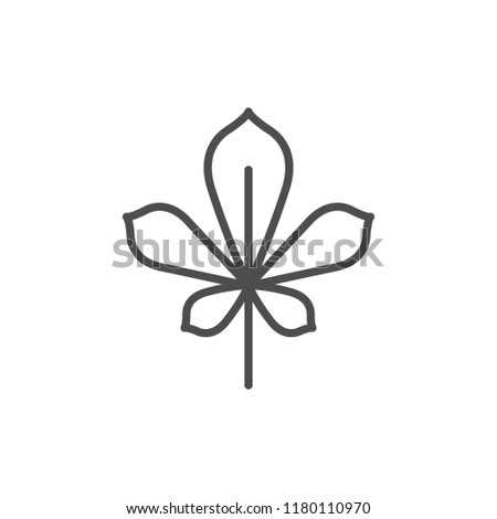 Chestnut leaf line icon isolated on white