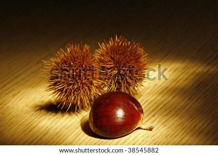 chestnut on the table