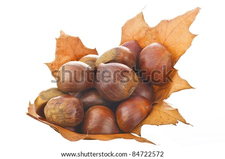 Chestnuts fresh fruit close up