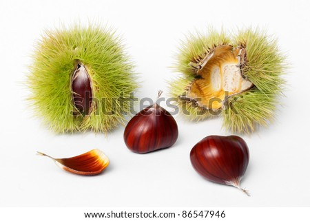 chestnuts fresh fruits and seeds on white background