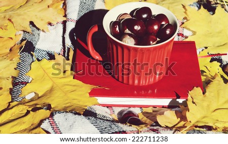 chestnuts in a bowl,autumn,autumn themes,yellow leaves,the sun,book,diary,tartan plaid,