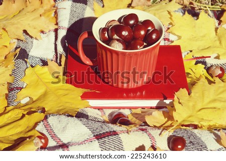 chestnuts in a cup,autumn,autumn themes,yellow leaves,the sun,book,diary,tartan plaid,