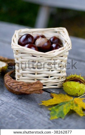 Chestnuts in a wicker basket standing on the garden table