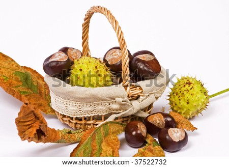 Chestnuts in basket with leaf - isolated