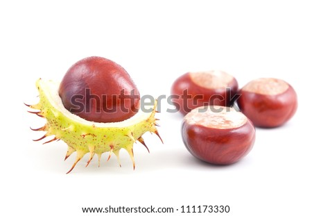 Chestnuts isolated on a white .