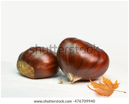 chestnuts two isolated , plane autumn leaf Foto stock ©