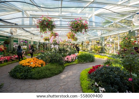 CHIANGMAI , THAILAND - JAN 2 2017: Royal Flora Ratchaphruek Park located in Chiang Mai Province ,Thailand, Asia.