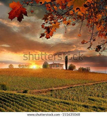 Chianti vineyard landscape in Tuscany, Italy - stock photo