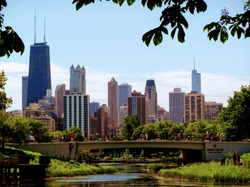 Chicago skyline seen from Lincoln Park Zoo