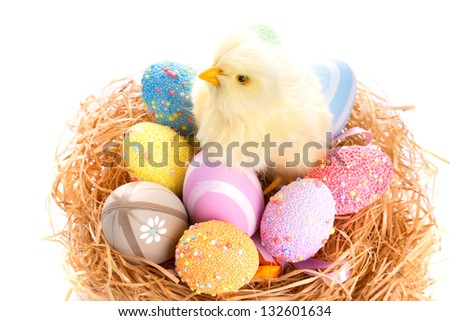 Chick and colorful Easter eggs in the nest