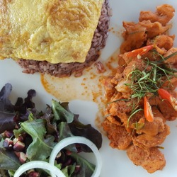 chicken curry with coconut milk served with salad, rice and omelette