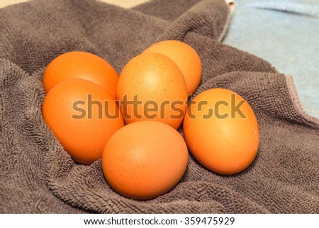 Chicken Egg #359475929