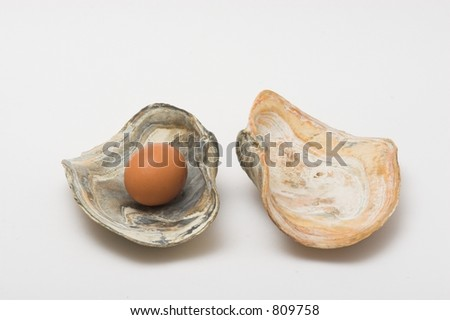 Chicken egg imitating a pearl in a shell
