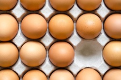 Chicken eggs in paper egg tray.
