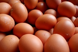 Chicken eggs. In some areas in Indonesia, chicken egg yolk mixed with honey is used for herbal medicine.