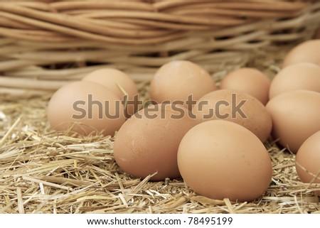 Chicken eggs on a straw bazaar counter
