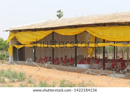 Chicken Farm Business and shelters  in India  #1422184136