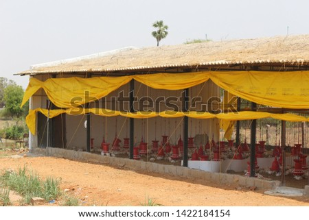 Chicken Farm Business and shelters  in India  #1422184154