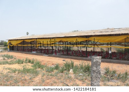 Chicken Farm Business and shelters  in India  #1422184181