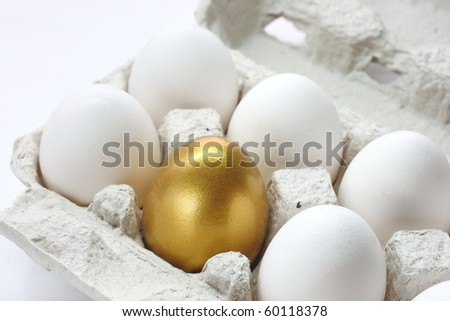 Chicken golden egg