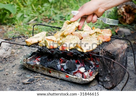 Chicken meat barbecue outdoors with hand