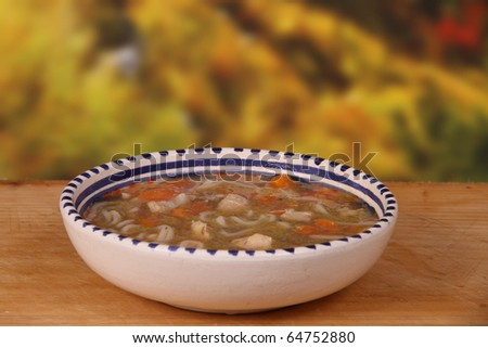 chicken noodle soup with carrot and onion