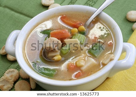 Chicken noodle soup with veggies