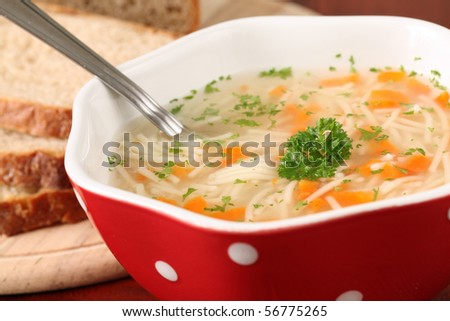 Chicken or turkey soup with carrot, noodles and parsley