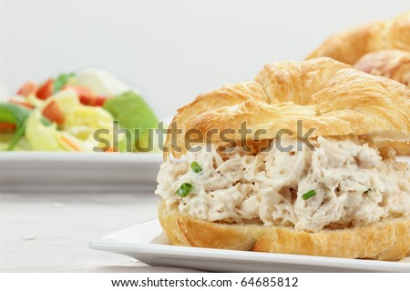 Chicken salad on a croissant bun with a healthy salad.