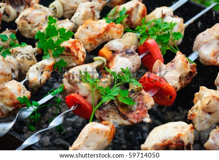 Chicken skewers with tomatoes - stock photo
