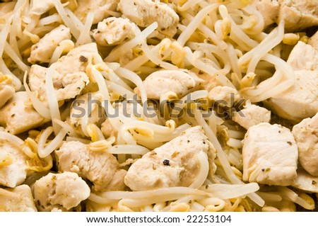 Chicken with mung bean sprouts - stock photo