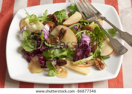 Chicory, walnut and apple salad on a plate