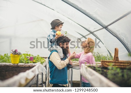 child and parents. child and parents in greenhouse. happy child and parents work in home farm. child and parents concept. #1299248500