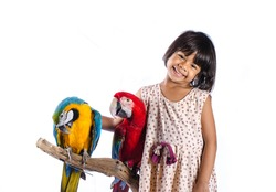 Child and Parrot On White Background