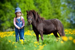 Child and small horse in field