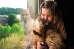 Child at home with pet cat. Little girl near window