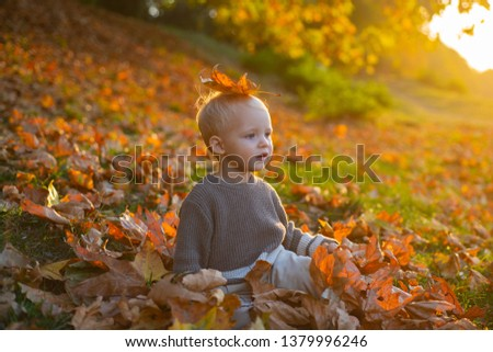 Child autumn leaves background. Warm moments of autumn. Toddler boy blue eyes enjoy autumn. Small baby toddler on sunny autumn day. Warmth and coziness. Happy childhood. Sweet childhood memories.