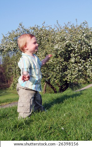 Child Baby Boy Standing In Park On Grass In Nature. Small ...