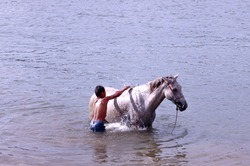 Child bathing his horse in the san francisco river