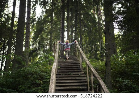 Child climbs an old wooden ladder upward  in the wood