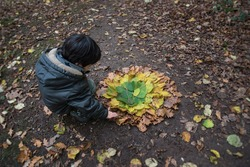 Child creating land art with multicolored autumn leaves in the forest. Creative children activity. Forest school.